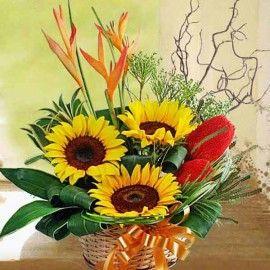 3 SunFlowers Basket Arrangement