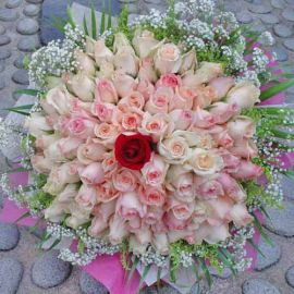 99 Roses ( 98 Champagne 1 Red ) Handbouquet