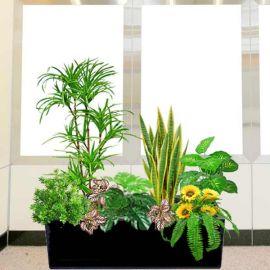 Artificial Sansevieria Plants Group in Planter Box