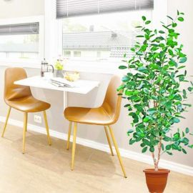Artificial Ficus Moclame Trees 170cm Height