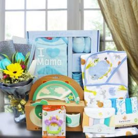 Baby Boy Gift Hamper Delivery In Singapore