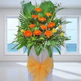 Orange Gerbera Opening Stand Flowers Arrangement