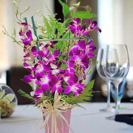 10 stalks Orchids Table arrangement