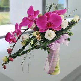 Purple Phalaenopsis Orchids Hand Bouquet