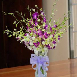 Mixed Orchid in Glass Vase