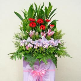 Pink Lily & Red Gerbera on Pink Box Stand (5 Feet in height)