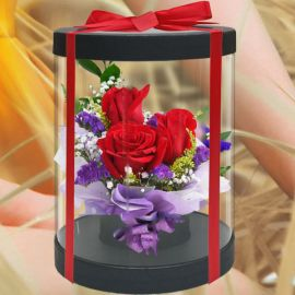 3 Red Roses in Cylinder Gift Box 20cm Height