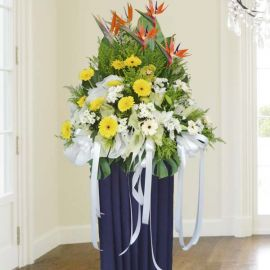 Bird of paradise Sympathy Flower Delivery