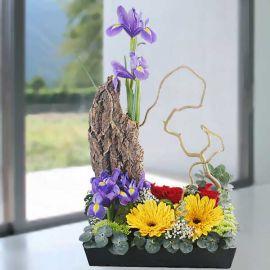 Iris, Rose & Gerbera Table Arrangement